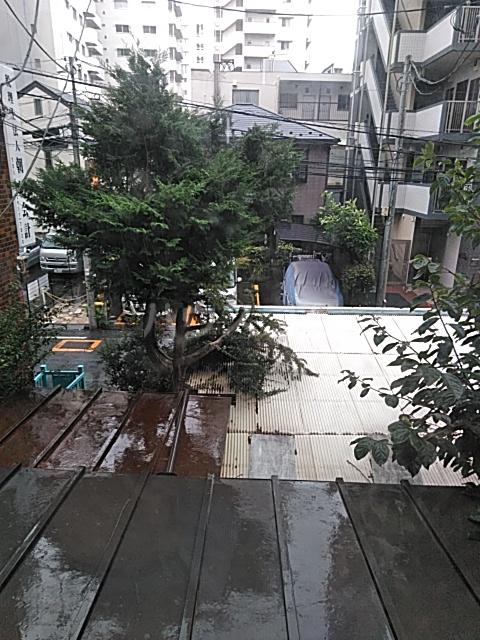 岡本荘 202号室の景色