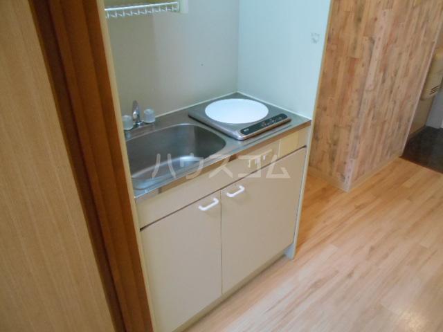 スカイロード御池 202号室のキッチン