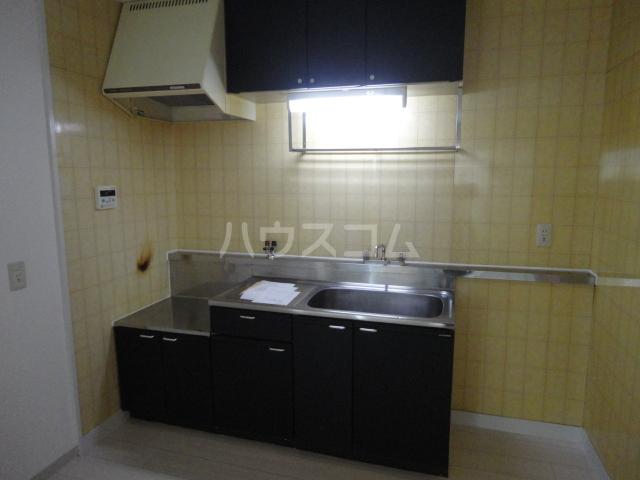 ルナパリス 202号室のキッチン