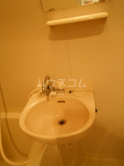 ヴィラブラウ 202号室の洗面所