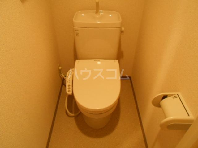 ヴィラブラウ 202号室のトイレ