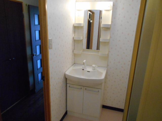 グリーンシティ岩倉 301号室の洗面所