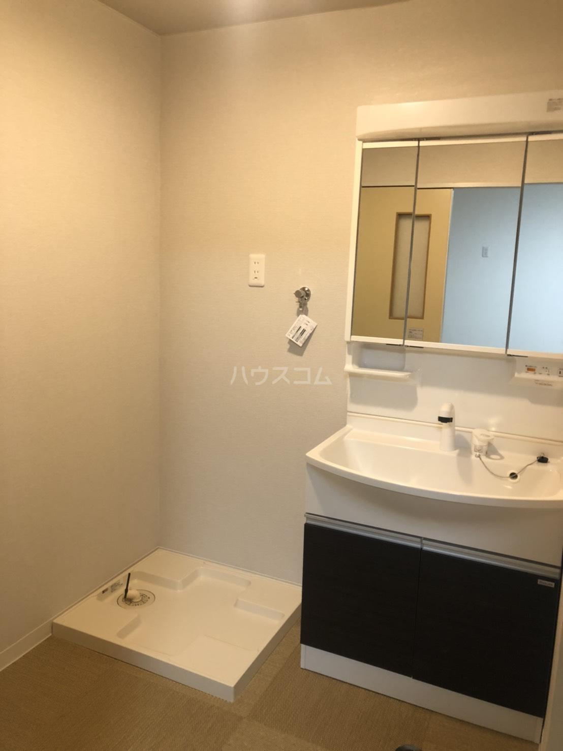 アピカル千王 405号室の洗面所