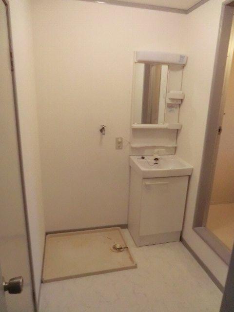 セーフティーハイム 101号室の洗面所