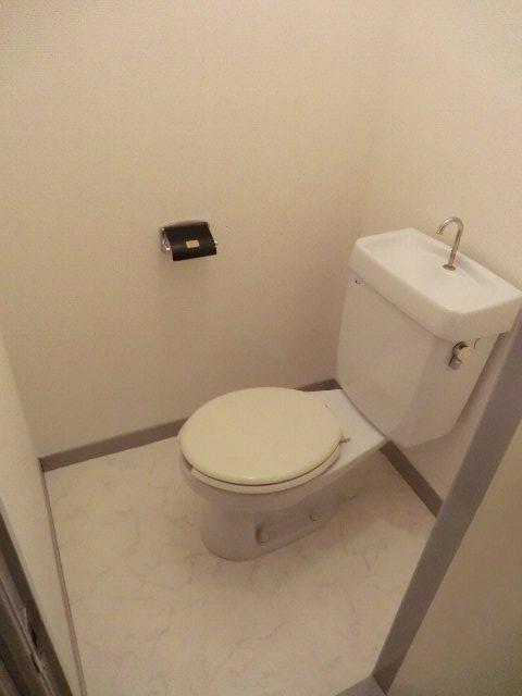 セーフティーハイム 101号室のトイレ