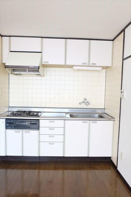 第2ミリオンパーク 203号室のキッチン
