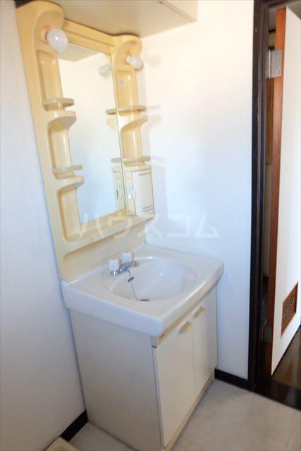 第2ミリオンパーク 203号室の洗面所