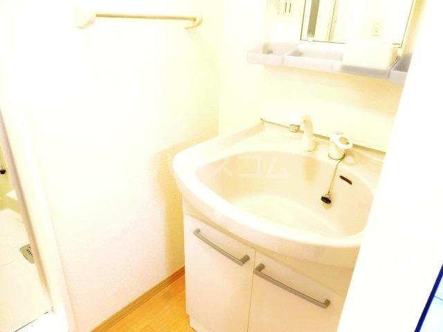 サンビレッジⅡ 202号室の洗面所