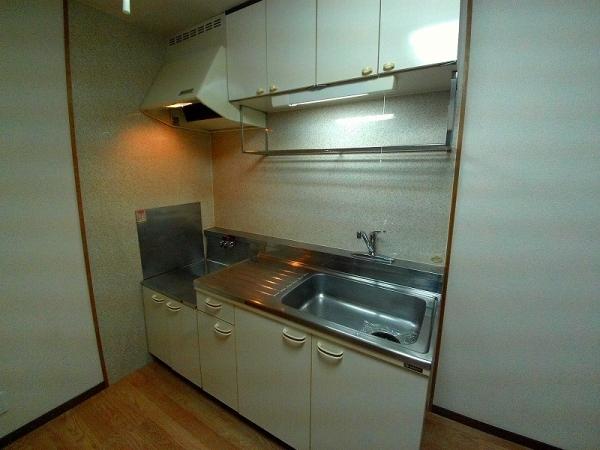 Surplus宇塚 202号室のキッチン