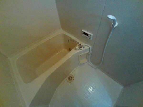 Surplus宇塚 202号室の風呂