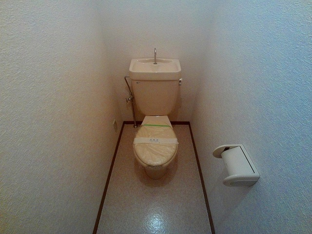 Surplus宇塚 202号室のトイレ