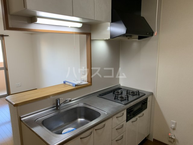 ビアンシュール美園 203号室のキッチン