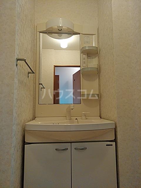 ビアンシュール美園 306号室の洗面所