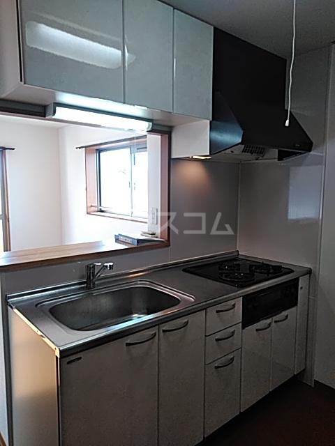 ビアンシュール美園 306号室のキッチン