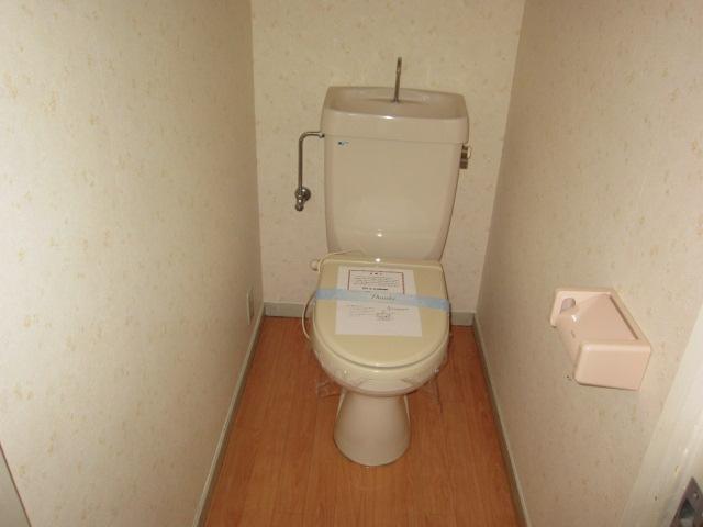ラフォーレ西沢 101号室のトイレ