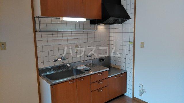 ピグレット 103号室のキッチン