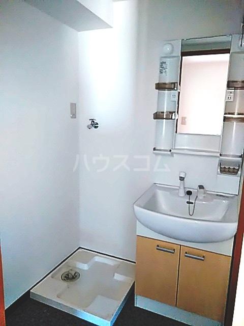 スマート・MS 301号室の洗面所