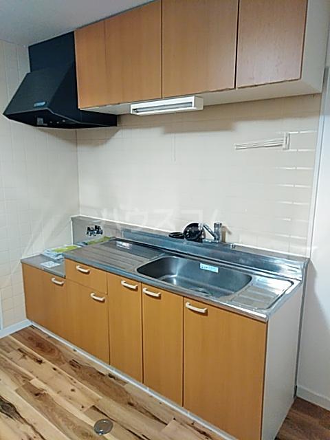 ベルガーデン向山3号館 303号室のキッチン