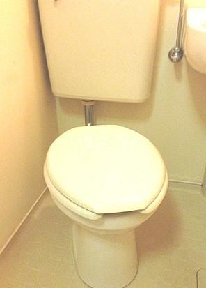 メゾン・ド・ポルトレー 304号室のトイレ