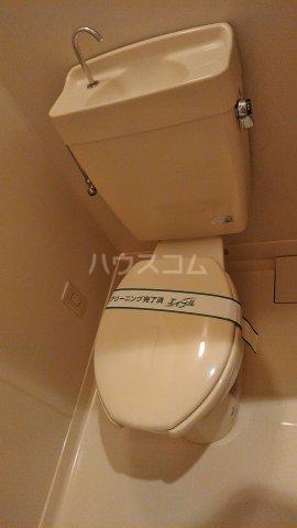チェリーメゾン自由が丘 102号室のトイレ