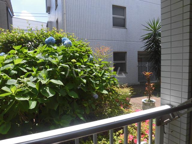 パシモントハウス 101号室の景色