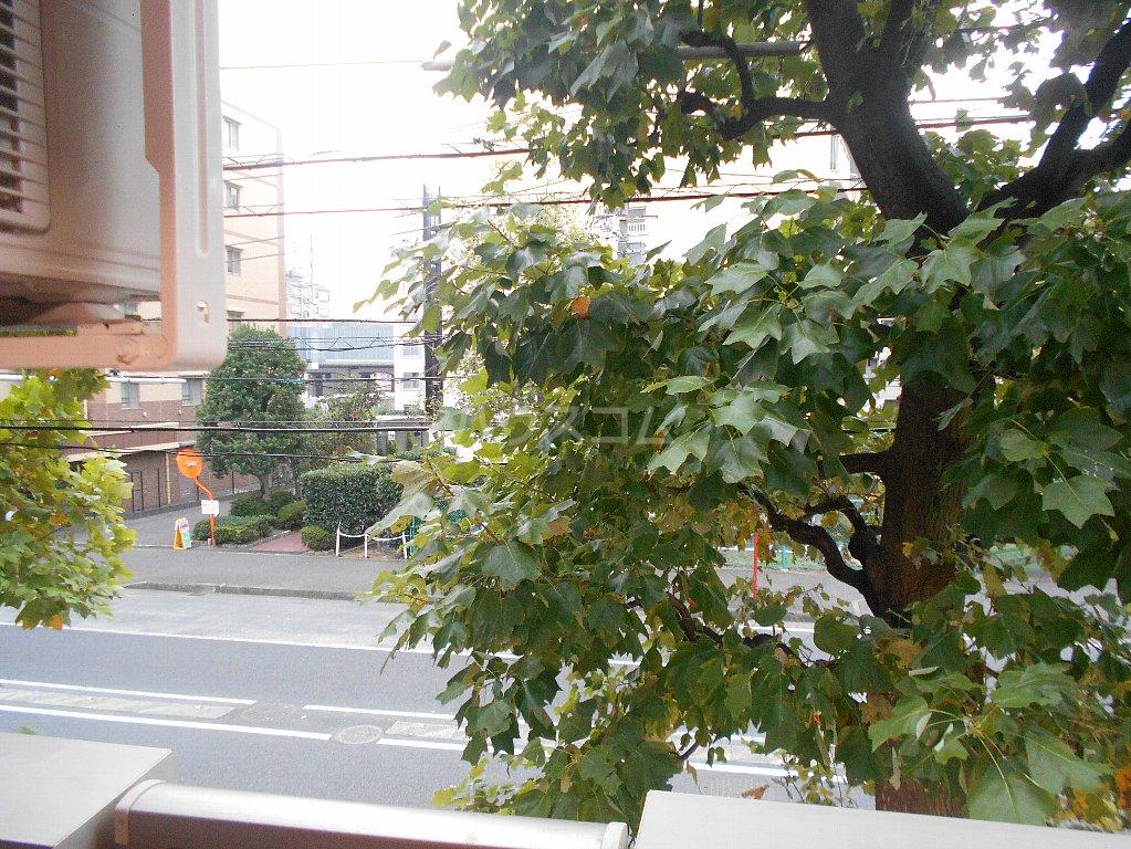 ラ カシータ大倉山 201号室の景色