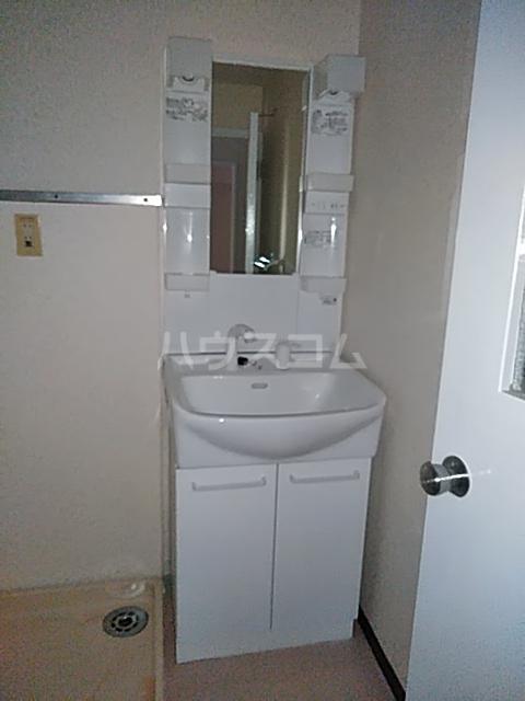 ハイムてつ 204号室の洗面所