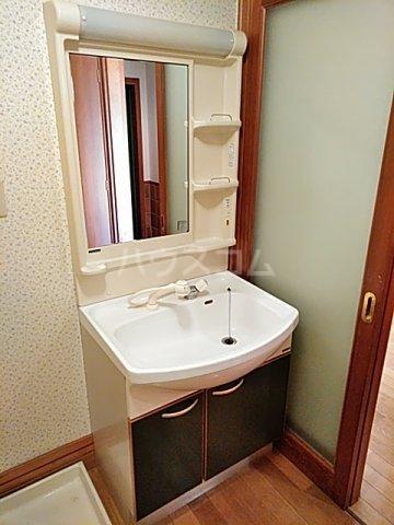 吉祥宮根の郷 303号室の洗面所