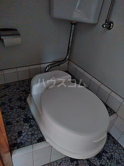 石井ハイツ 202号室のトイレ