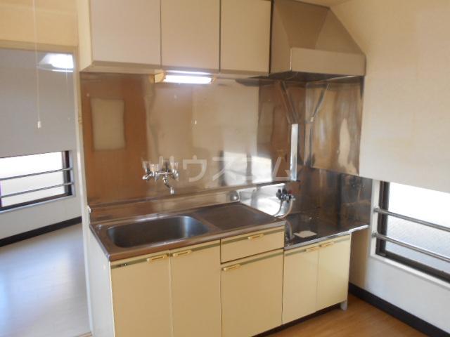 サン・リバー 202号室のキッチン