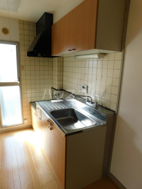 サンモール今泉 305号室のキッチン
