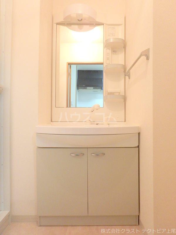 ルピナス 201号室の洗面所