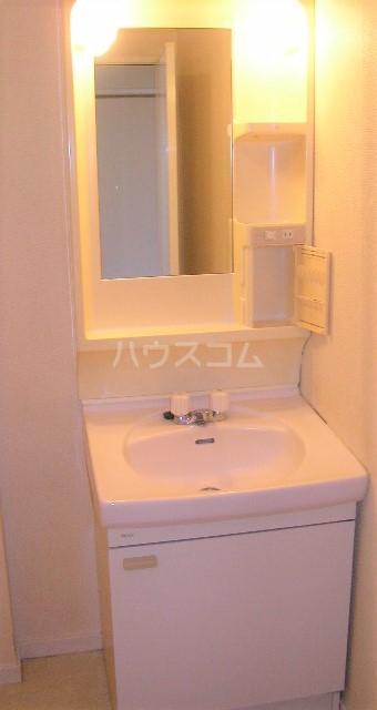 Grace 202号室の洗面所