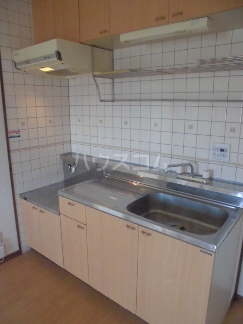 ガーデンパレスカネブン A 201号室のキッチン