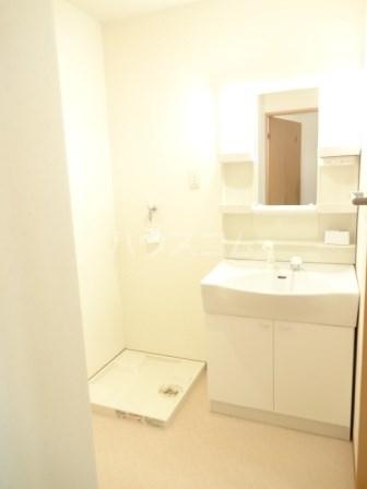 エヴァーグリーン 102号室の洗面所