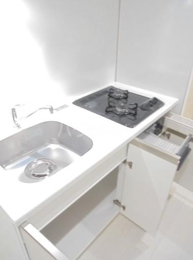 スカイコートグレース新宿中落合 103号室のキッチン