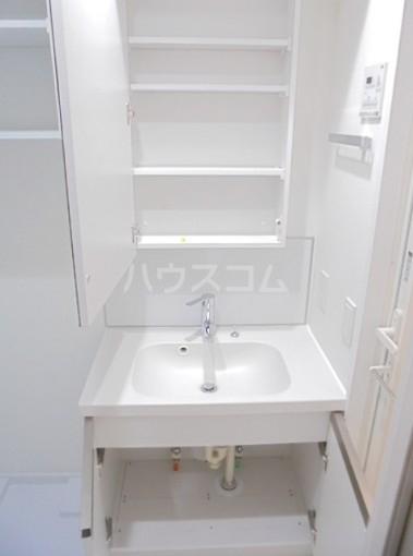 スカイコートグレース新宿中落合 103号室の洗面所