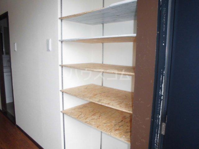 アパートメントハウス朴の樹 402号室の収納