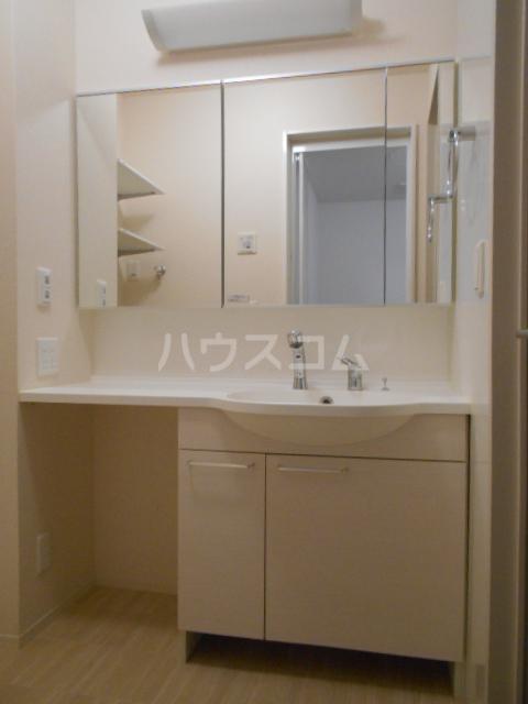 ヴァン オーキッド 201号室の洗面所