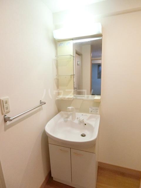 ハイツ・ルミエールペッティ 703号室の洗面所