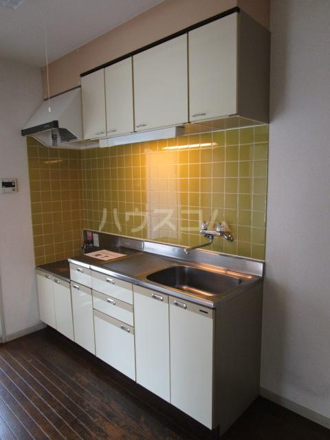 ケントコーポラス 202号室のキッチン