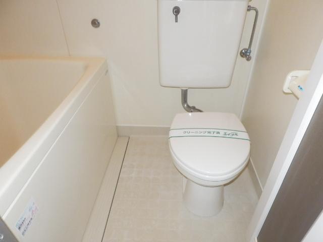ドリームハイツ 101号室のトイレ