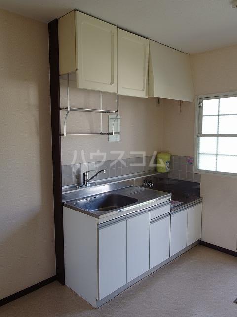 ピアシティナカムラ 203号室のキッチン