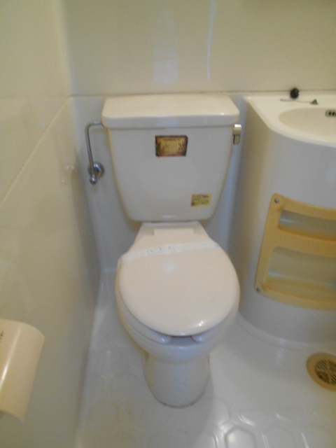 メゾン コリーナ 203号室のトイレ