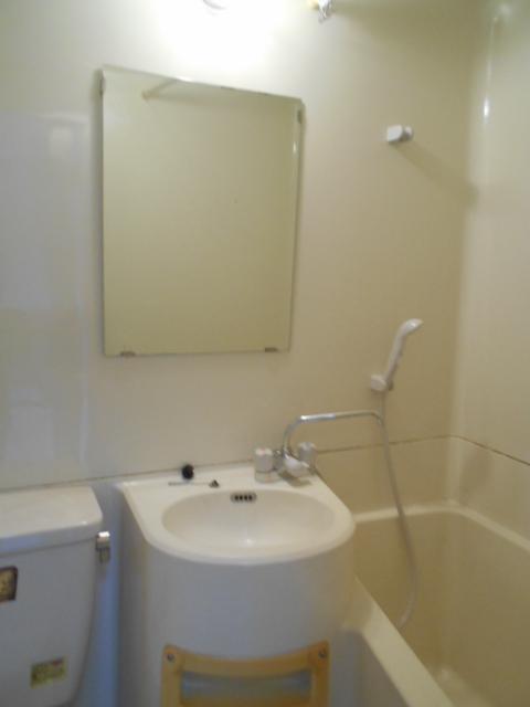 メゾン コリーナ 203号室の洗面所