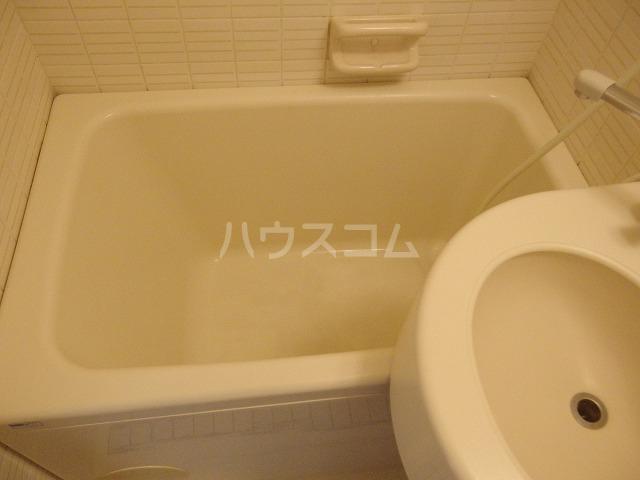 ガーデンヒルズ聖蹟桜ヶ丘 304号室の風呂