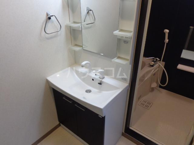 グランドロータス聖蹟 103号室の洗面所