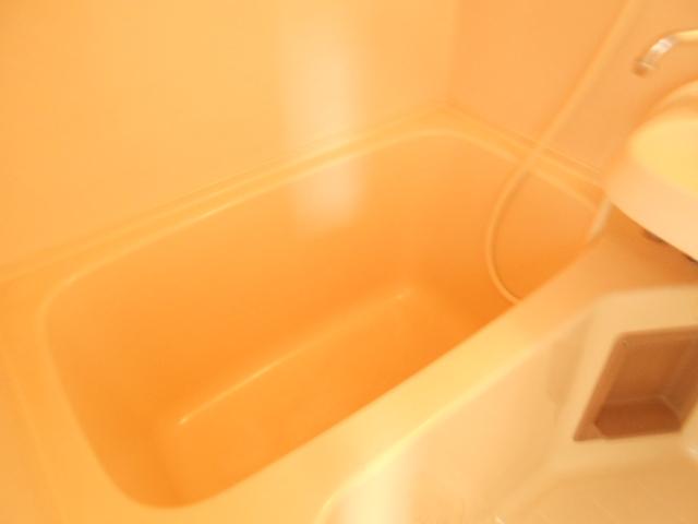 ゆたかハイツ 202号室の風呂