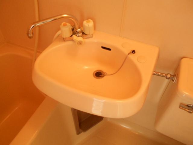 ゆたかハイツ 202号室の洗面所