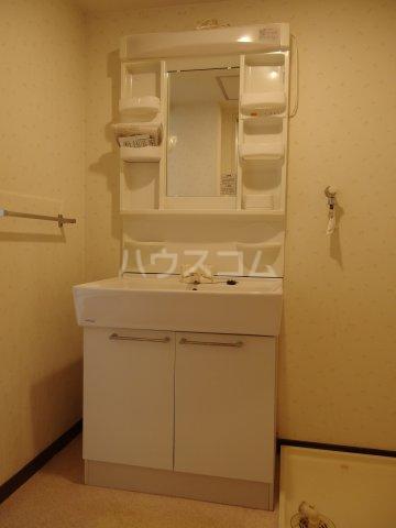 ロータスハイム 301号室の洗面所